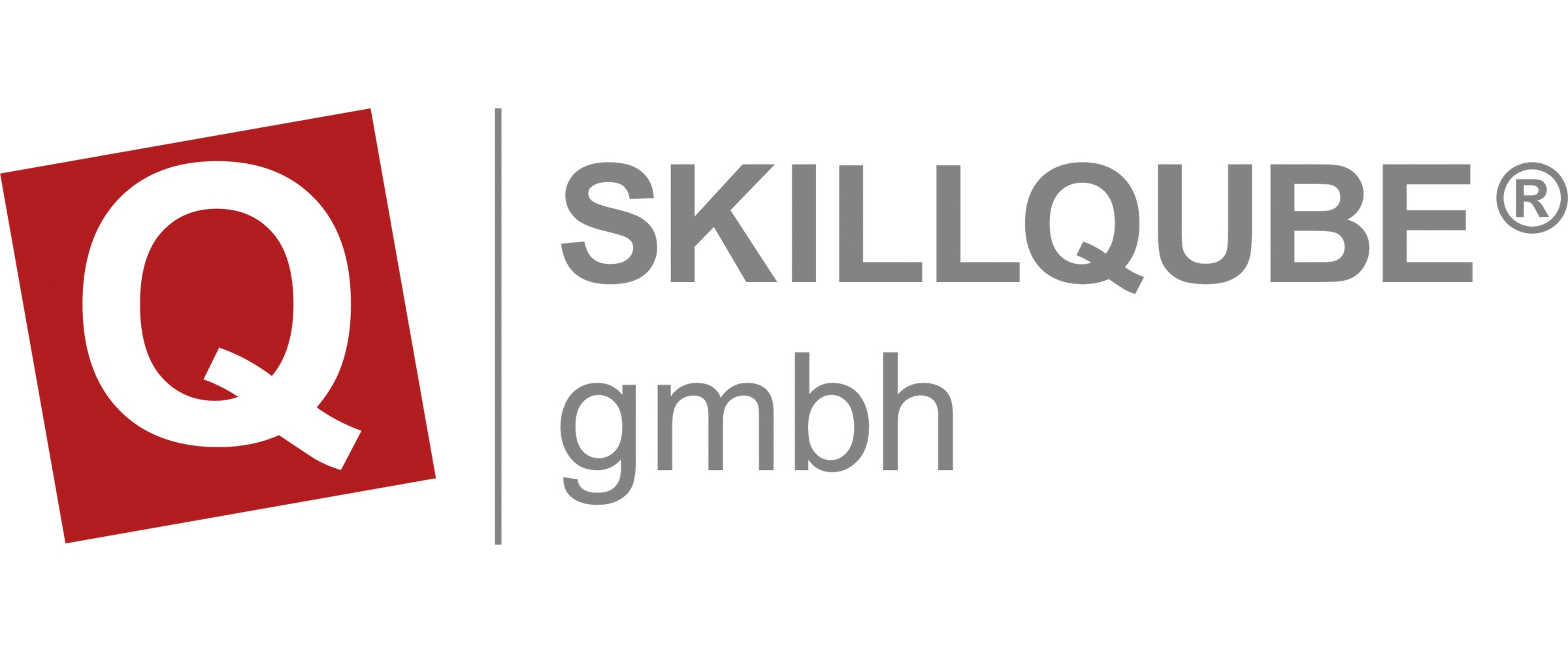 http://www.agn.at/kongress/wp-content/uploads/2017/08/skillqube.jpg